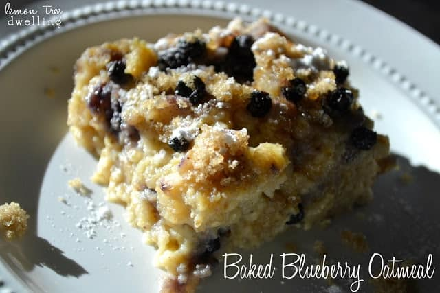 This Baked Blueberry Oatmeal is creamy, delicious, and packed with blueberry flavor! Best of all, it's ready in under an hour and feeds a crowd!