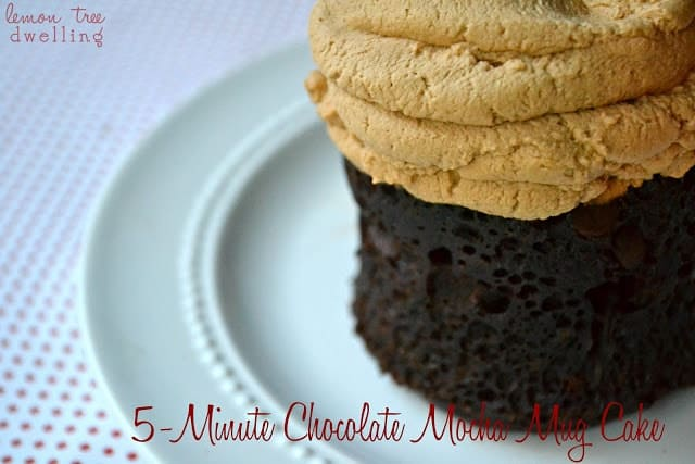 5 Minute Chocolate Mocha Mug Cake