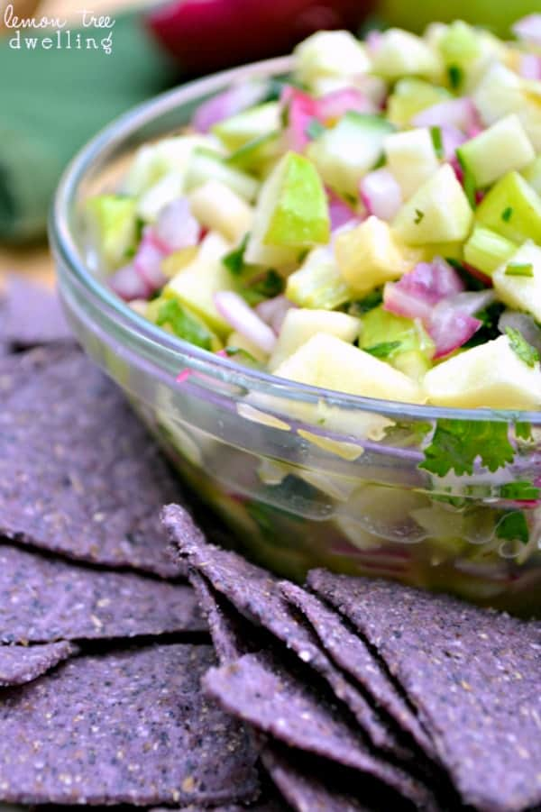 Green Apple Salsa made with tart Granny Smith apples, zesty cilantro, and tangy apple cider vinegar. Delicious!