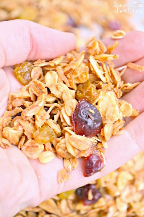 Harvest Granola 2b fixed
