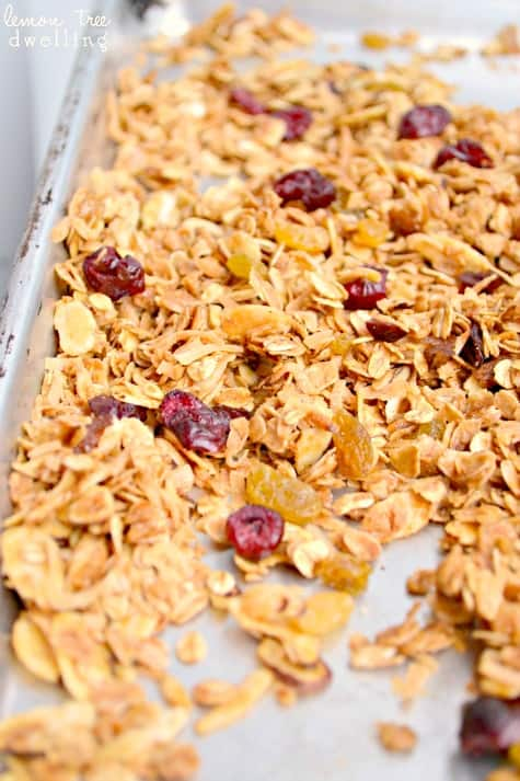 Harvest Granola 3 fixed