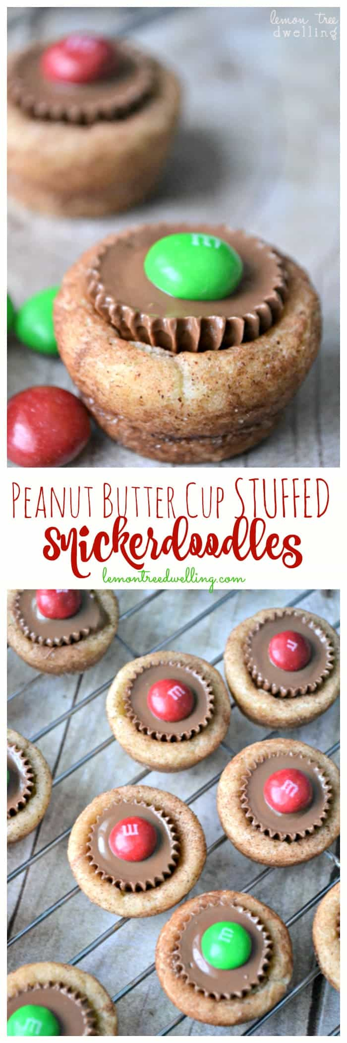 Peanut Butter Cup Stuffed Snickerdoodles are a sweet treat that will please even your biggest critics. These delightful stuffed snickerdoodles area fun and delicious combination....perfect for Christmas!