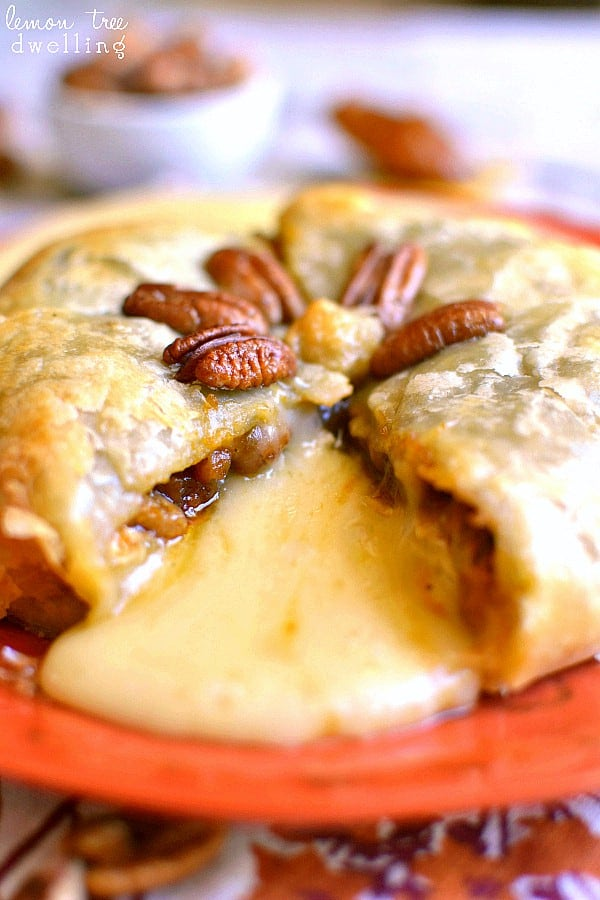 pumpkin pecan baked brie lemon tree dwelling