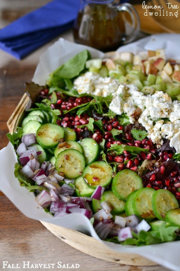 Fall Harvest Salad from Lemon Tree Dwelling featured on Belle of the Kitchen