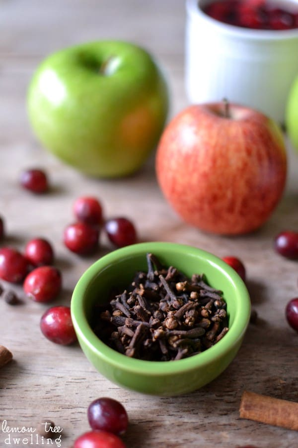 Slow Cooker Spiced Cranberry Apple Cider. Pin it now and make it later!