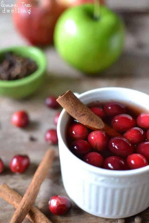 Cranberry Apple Cider 4