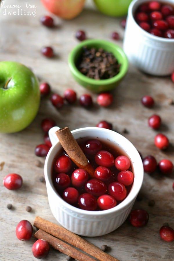 Cranberry Apple Cider 5