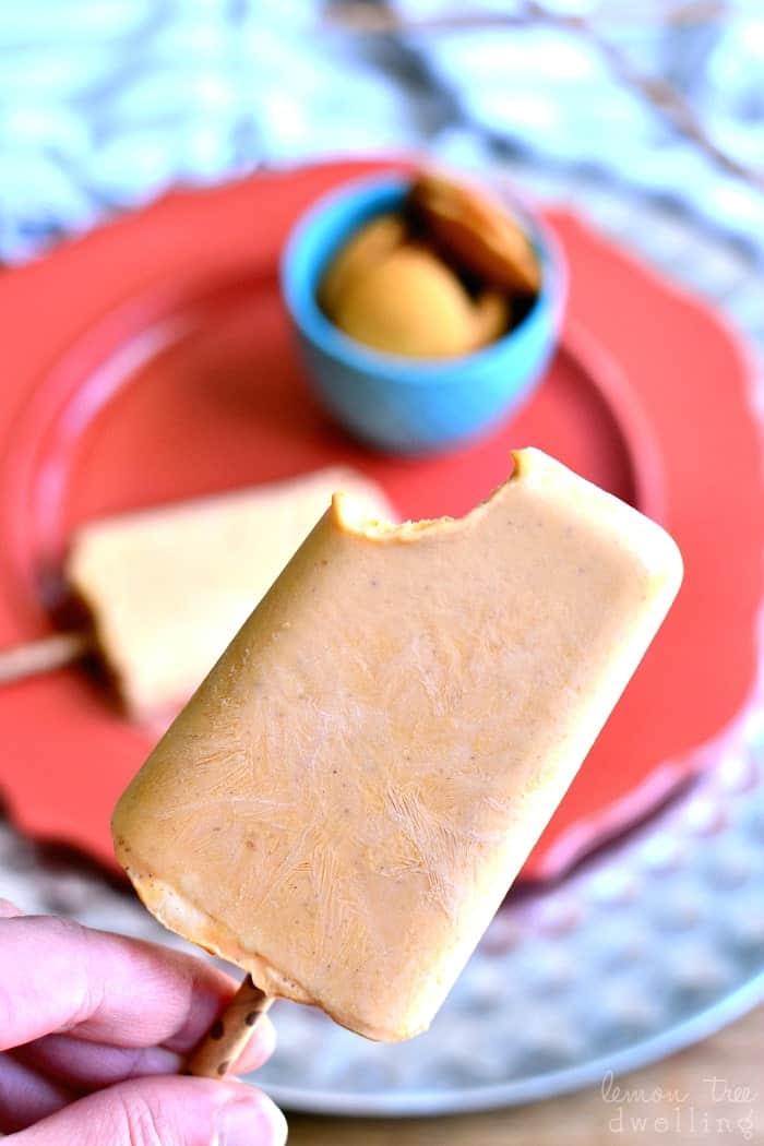 Skinny Pumpkin Pie Popsicles | Sweet Pumpkin Recipes | Homemade Recipes