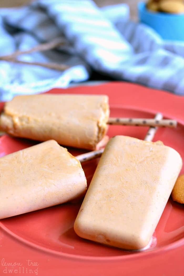 "Skinny Pumpkin Pie Popsicles made with Truvia®! These popsicles are rich, creamy, and packed with pumpkin flavor. So delicious, you would never guess they're ""skinny""!"