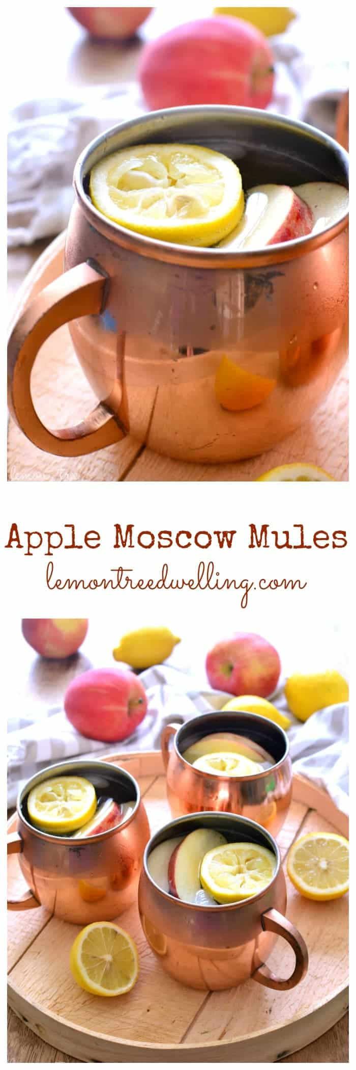 Apple Moscow Mules are a refreshing twist on the original, and perfect for fall!