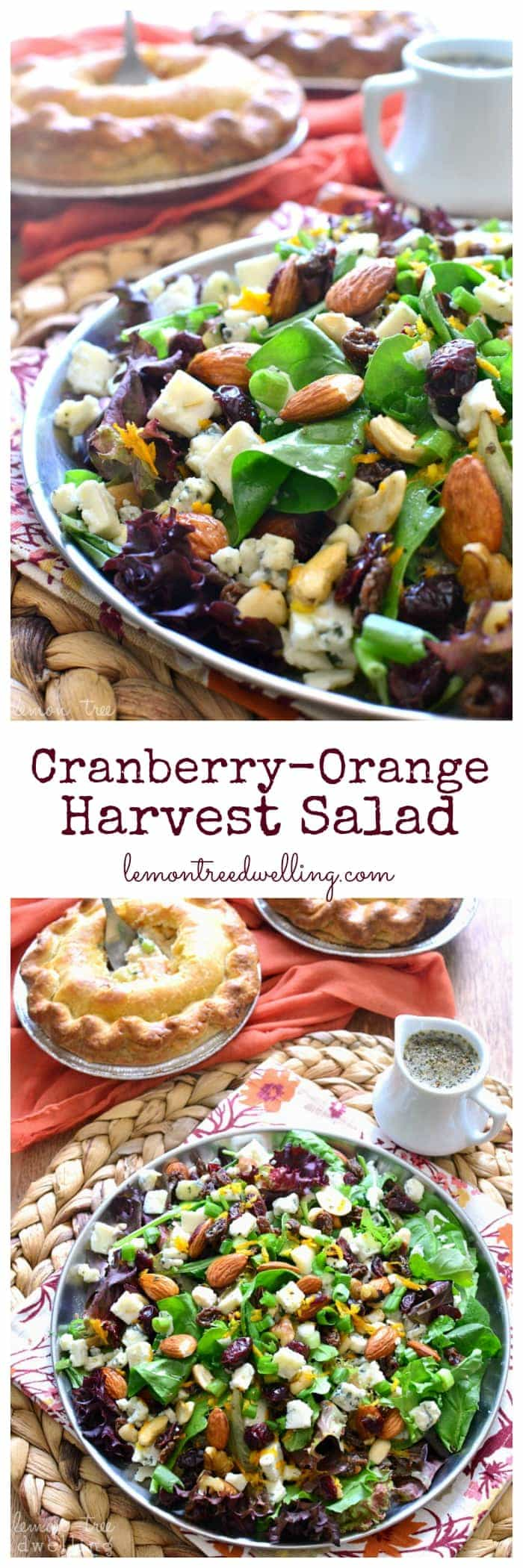 This Cranberry-Orange Harvest Salad combines mixed greens with dried fruit & nuts, gorgonzola cheese, and a zesty orange vinaigrette. It's packed with flavor, perfect for fall, and delicious served with Pick 'n Save Pot Pies! #mypicknsave #spon