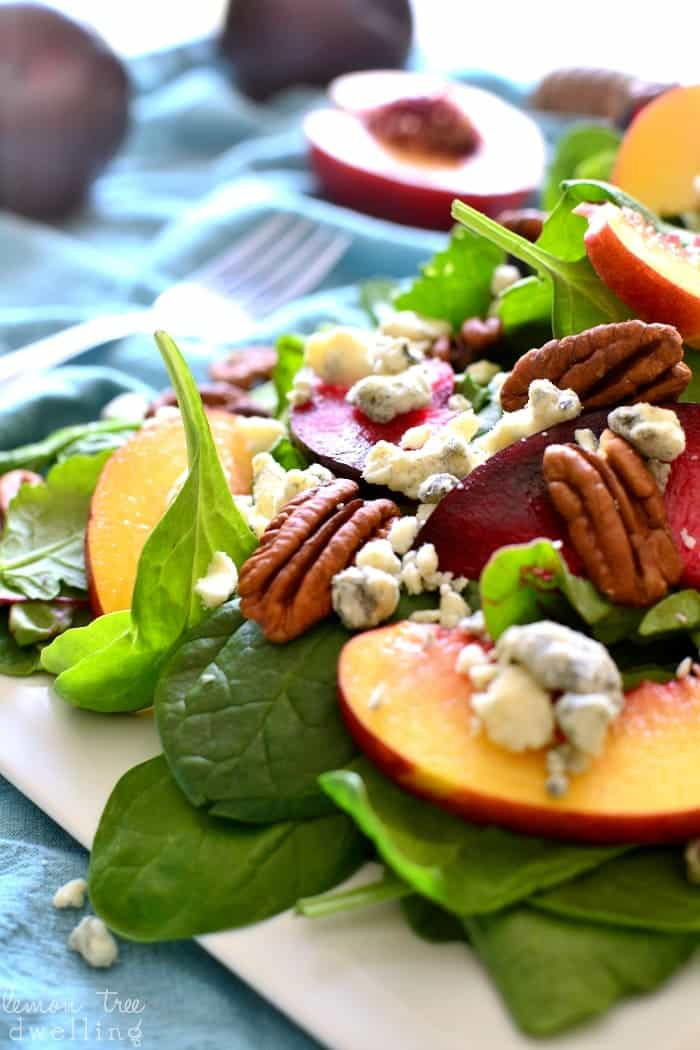 This Stone Fruit Salad combines sweet plums and nectarines with crunchy pecans, blue cheese, and balsamic vinaigrette. It's an explosion of flavor in every bite.....the perfect end of summer salad!