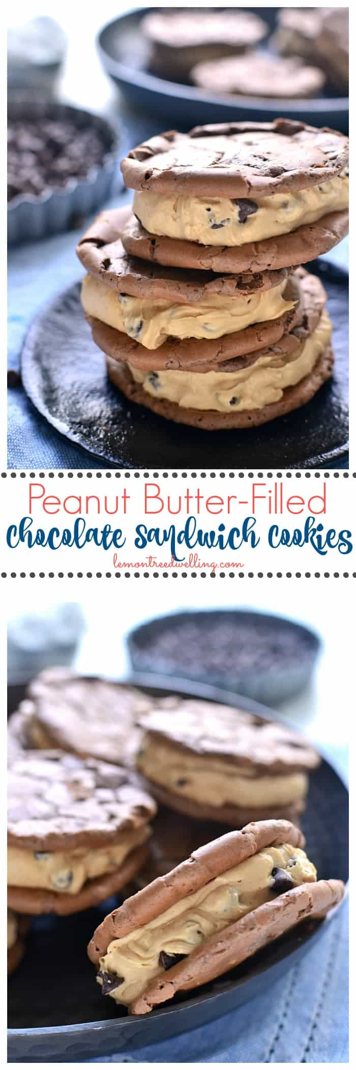 These Peanut Butter-Filled Chocolate Sandwich Cookies are the perfect pairing of two favorite flavors. Chewy chocolatey cookies meet creamy peanut butter frosting in these deliciously dreamy sandwich cookies!