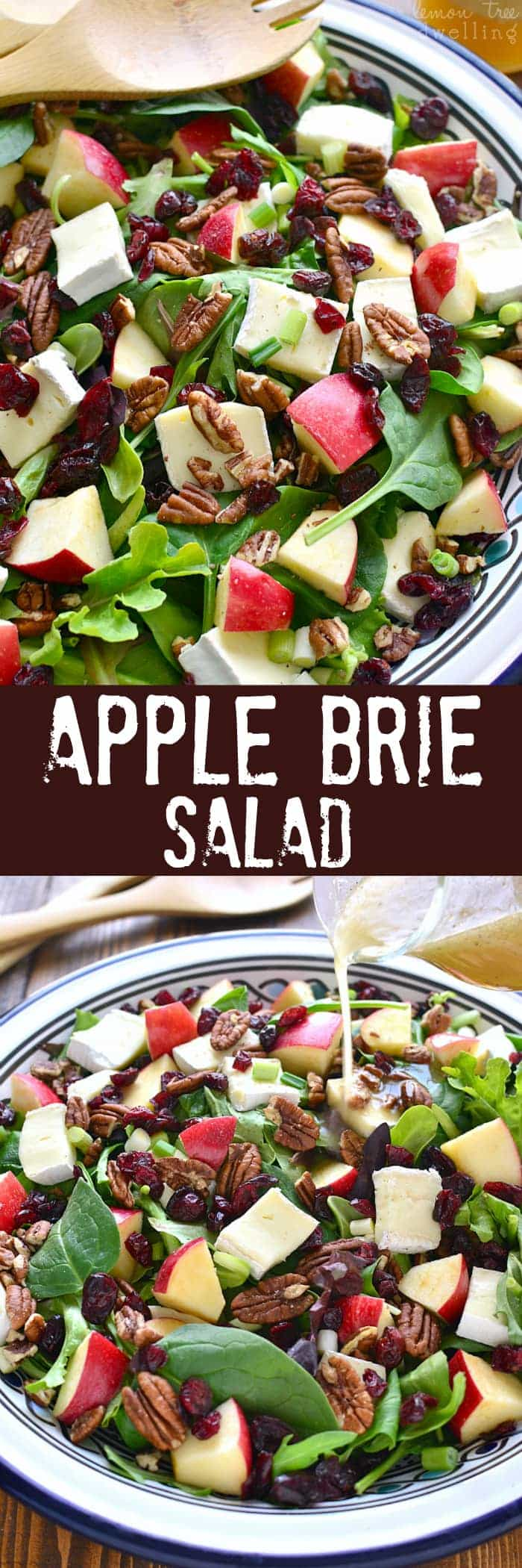 Collage image of Apple Brie Salad