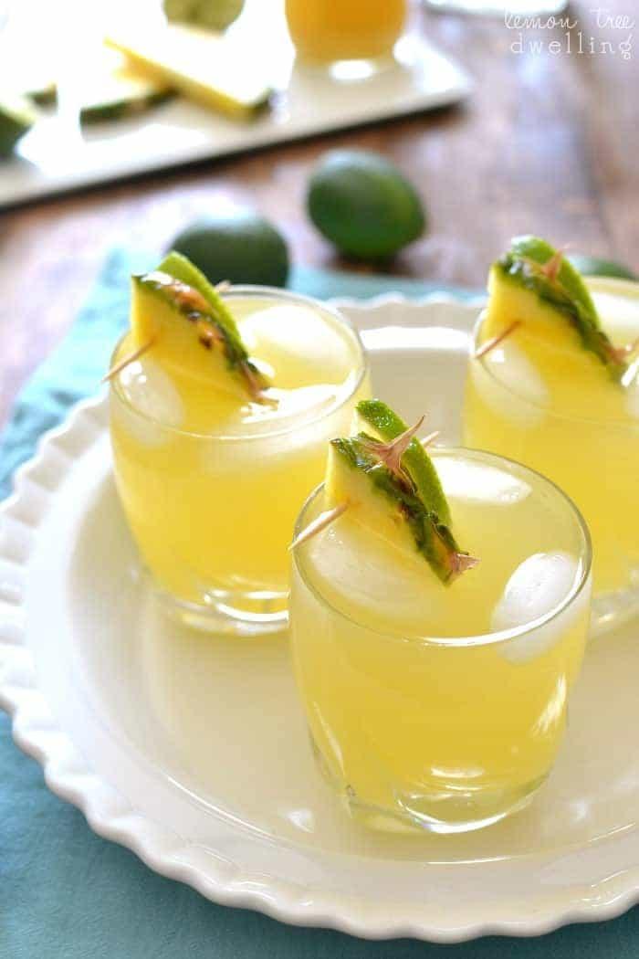 Pineapple Paloma 2b