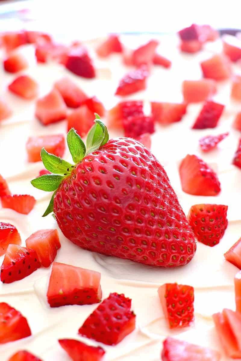 Strawberries & Cream Lush 4d