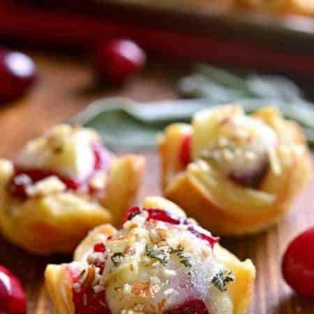 chicken-cranberry-brie-tartlets-16-small