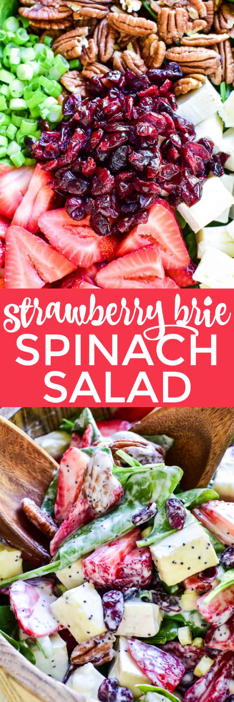 This Strawberry Brie Spinach Salad is one of our favorites! Made with fresh spinach, sliced strawberries, dried cranberries, pecans, and brie cheese, this salad is the perfect combination of savory, sweet, creamy, and delicious. It makes a great lunchtime salad and can be topped with chicken or shrimp for a more satisfying dinner. And....it's equally delicious as a fresh, unique side dish for any meal. Whether you're a spinach salad connoisseur or trying it for the first time, you'll love everything about this creamy strawberry brie twist!