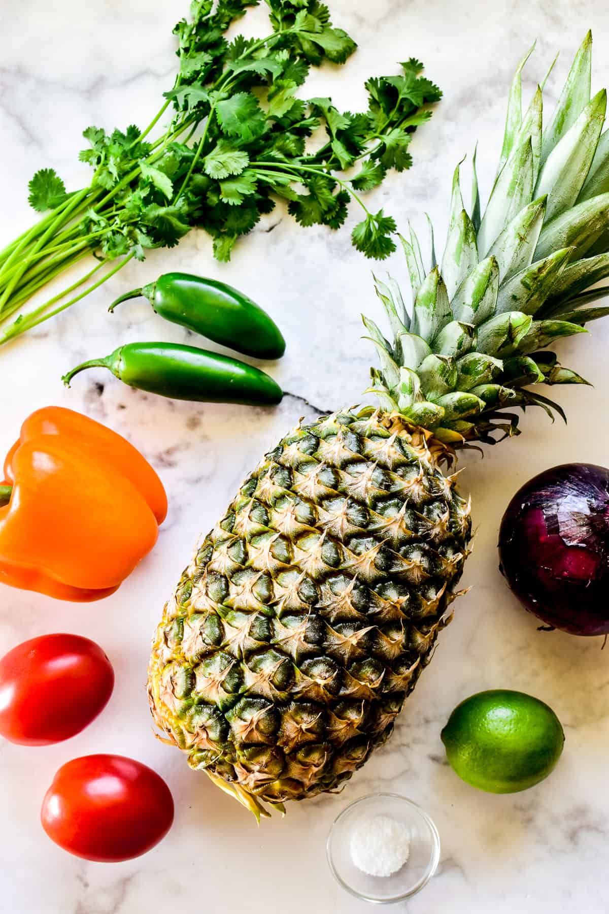 Pineapple Salsa ingredients on a marble background