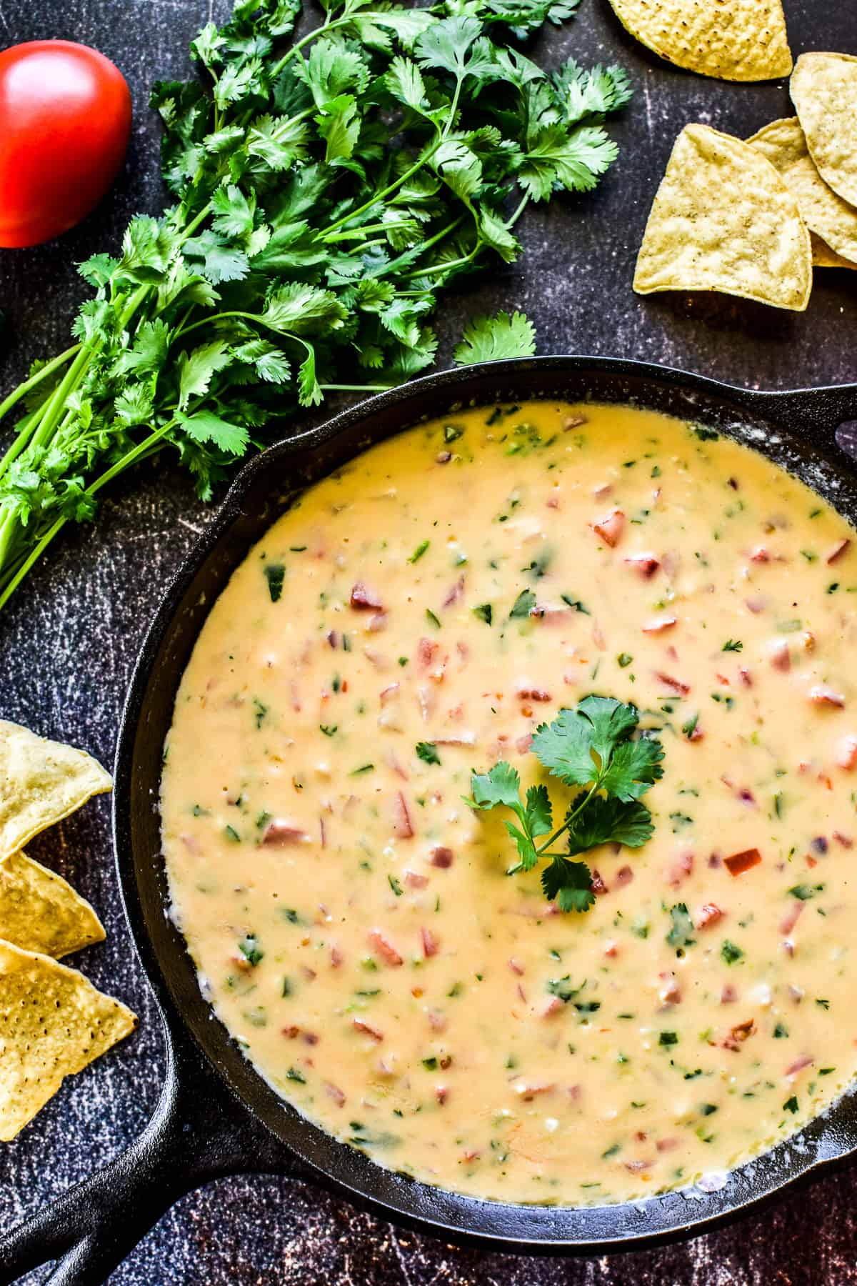 Overhead shot of Queso Dip in cast iron skillet