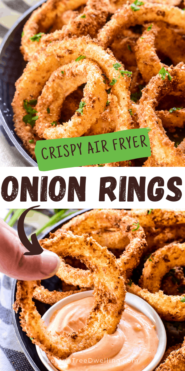 Air Fryer Onion Rings with text