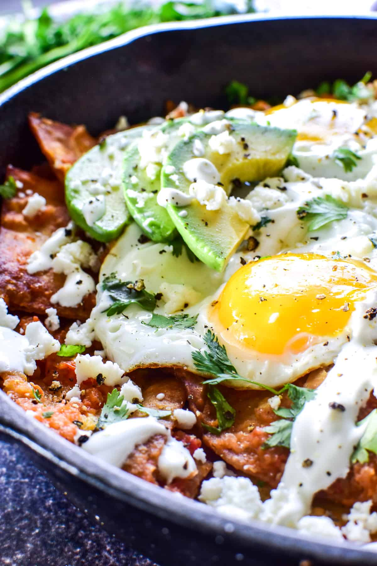 Close up of Chilaquiles with eggs, avocado, sour cream, and cheese